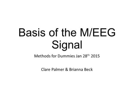 Basis of the M/EEG Signal