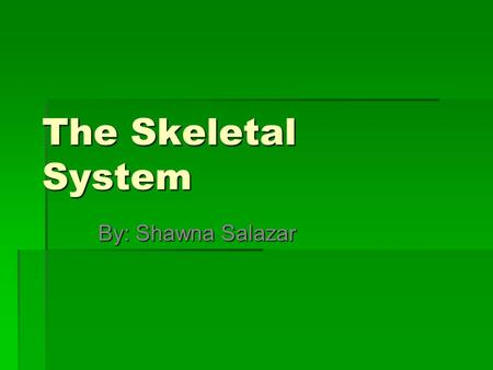 The Skeletal System By: Shawna Salazar.
