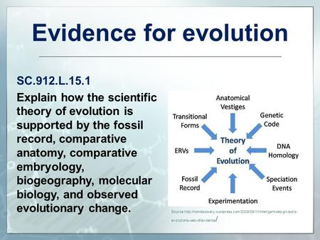 Evidence for evolution SC.912.L.15.1 Explain how the scientific theory of evolution is supported by the fossil record, comparative anatomy, comparative.