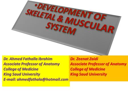 Dr. Ahmed Fathalla Ibrahim Associate Professor of Anatomy College of Medicine King Saud University   Dr. Zeenat Zaidi Associate.