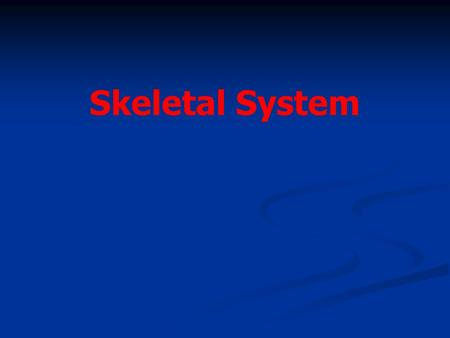 Skeletal System. Chapter 7.1 Objective- Read 7.1 and understand that bones are alive and multifunctional. Objective- Read 7.1 and understand that bones.