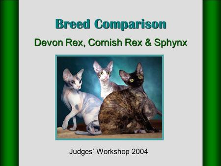 Breed Comparison Devon Rex, Cornish Rex & Sphynx Judges' Workshop 2004.