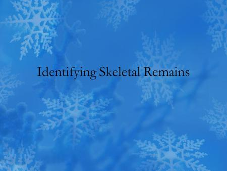 Identifying Skeletal Remains. Size and Stature Height can be estimated from the lengths of certain long bones –Humerus –Femur General build can be characterized.