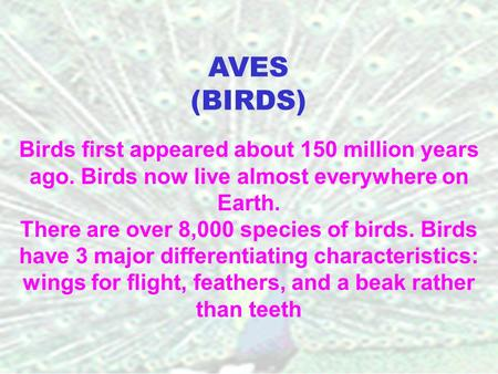 Birds first appeared about 150 million years ago. Birds now live almost everywhere on Earth. There are over 8,000 species of birds. Birds have 3 major.