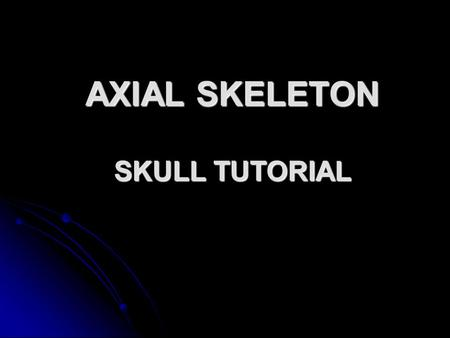 AXIAL SKELETON SKULL TUTORIAL