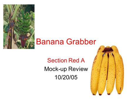 Section Red A Mock-up Review 10/20/05 Banana Grabber.