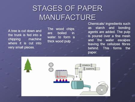 STAGES OF PAPER MANUFACTURE A tree is cut down and the trunk is fed into a chipping machine where it is cut into very small pieces. The wood chips are.