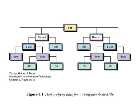 Figure 5.1 Hierarchy of data for a computer-based file.
