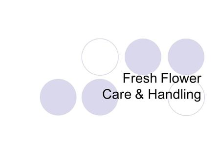 Fresh Flower Care & Handling. Care and Handling Vase Life-length of time flowers remain beautiful Senescence-flower death.
