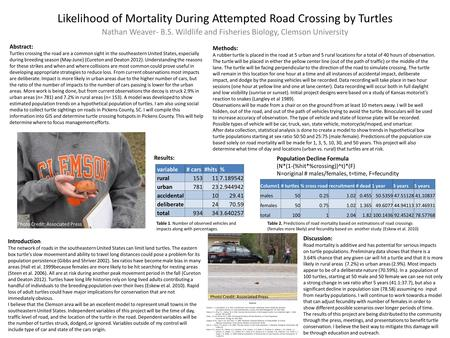 Likelihood of Mortality During Attempted Road Crossing by Turtles Nathan Weaver- B.S. Wildlife and Fisheries Biology, Clemson University Introduction :