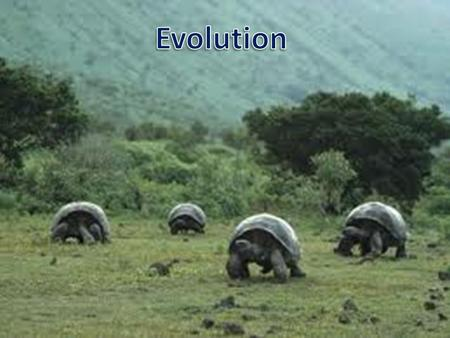 Evolution What is evolution? – It is the process of biological change by which descendents come to differ from their ancestors.
