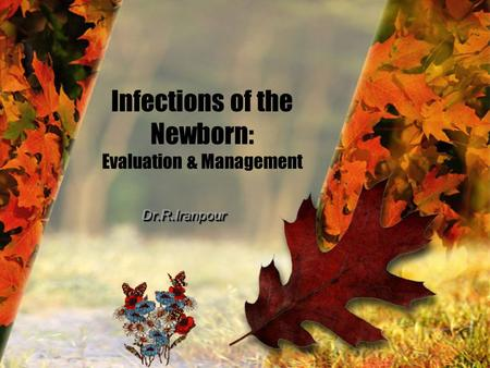 Infections of the Newborn: Evaluation & Management.