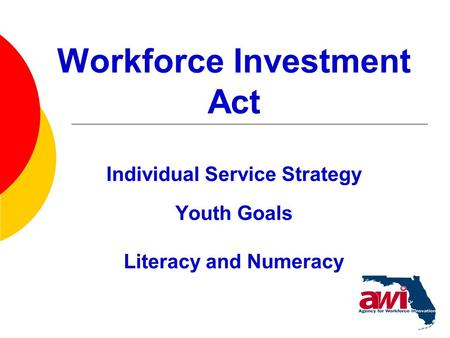 1 Workforce Investment Act Individual Service Strategy Youth Goals Literacy and Numeracy.