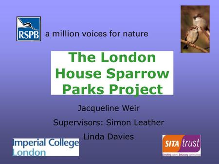 The London House Sparrow Parks Project Jacqueline Weir Supervisors: Simon Leather Linda Davies.