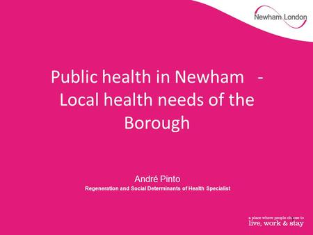 André Pinto Regeneration and Social Determinants of Health Specialist Public health in Newham - Local health needs of the Borough 1.
