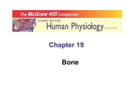 Chapter 19 Bone. A. Endocrine Control of Ca 2+ & PO 4 3-  __________________, 1,25-dihydoxy Vit D, & calcitonin control Ca 2+ and P0 4 3- levels & activities.