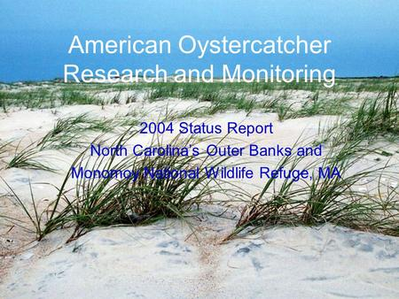 American Oystercatcher Research and Monitoring 2004 Status Report North Carolina's Outer Banks and Monomoy National Wildlife Refuge, MA.