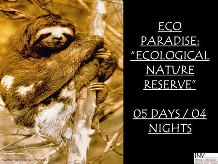 "ECO PARADISE: ""ECOLOGICAL NATURE RESERVE"" 05 DAYS / 04 NIGHTS Crédito: Heinz Plenge / Promperu."