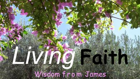Living Faith Wisdom from James. James, the writer - who was he? The brother of Jesus.
