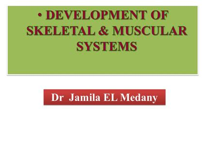 Dr Jamila EL Medany. OBJECTIVES At the end of the lecture, students should be able to:  List the different parts of mesoderm and the different divisions.