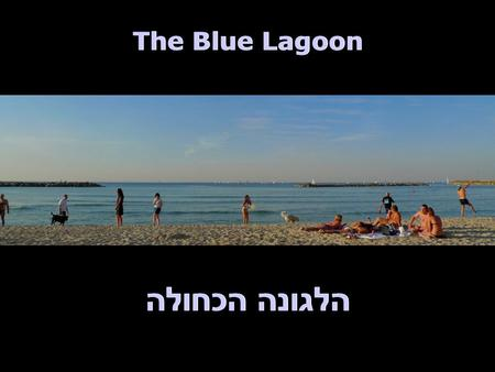 The Blue Lagoon הלגונה הכחולה. The Blue Lagoon הלגונה הכחולה חורף בתל אביב Winter in Tel Aviv.