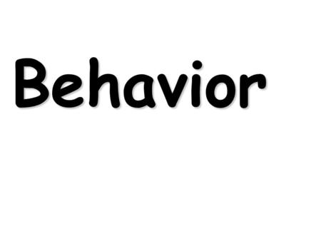 Behavior. Animal behavior is actually the product of genes modified by the environment.
