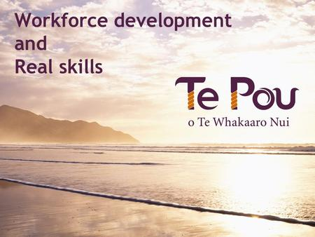 Workforce development and Real skills. What is workforce development?  Right people  Right place  Right time  Doing the right thing.