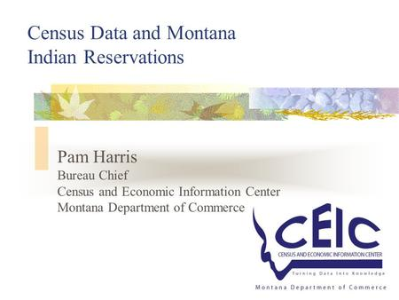 1 Census Data and Montana Indian Reservations Pam Harris Bureau Chief Census and Economic Information Center Montana Department of Commerce.