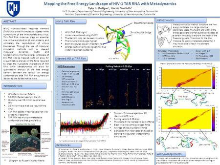 Mapping the Free Energy Landscape of HIV-1 TAR RNA with Metadynamics Tyler J. Mulligan 1, Harish Vashisth 2 1 M.S. Student, Department of Chemical Engineering,
