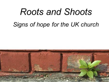 Roots and Shoots Signs of hope for the UK church.
