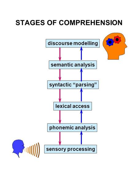 "STAGES OF COMPREHENSION discourse modelling semantic analysis syntactic ""parsing"" lexical access phonemic analysis sensory processing."