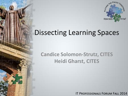 Dissecting Learning Spaces Candice Solomon-Strutz, CITES Heidi Gharst, CITES.