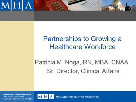 Partnerships to Growing a Healthcare Workforce Patricia M. Noga, RN, MBA, CNAA Sr. Director, Clinical Affairs.