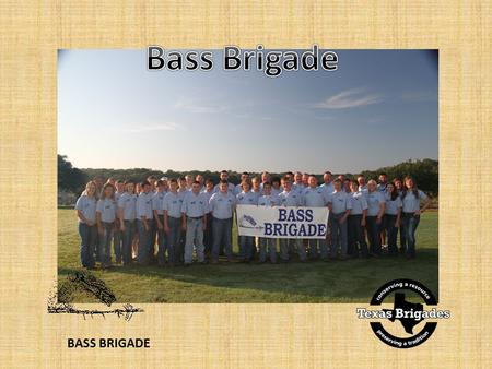 BASS BRIGADE. 5-day wildlife leadership camps Open to students ages 13-17 Cost is $400 – scholarships available Held annually in June and July 7 camps.