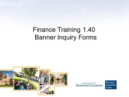 Finance Training 1.40 Banner Inquiry Forms. Training Level – What you need to know This training is a Level 1 course for users who are just beginning.