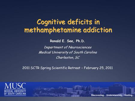 Cognitive deficits in methamphetamine addiction Ronald E. See, Ph.D. Department of Neurosciences Medical University of South Carolina Charleston, SC 2011.