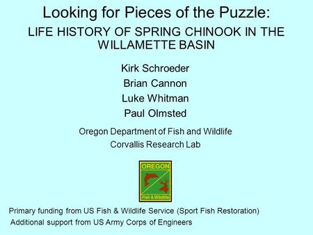 Looking for Pieces of the Puzzle: LIFE HISTORY OF SPRING CHINOOK IN THE WILLAMETTE BASIN Kirk Schroeder Brian Cannon Luke Whitman Paul Olmsted Oregon Department.