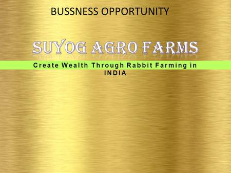 Create Wealth Through Rabbit Farming in INDIA