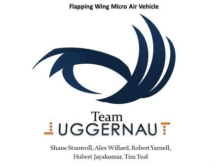 Team Shane Stumvoll, Alex Willard, Robert Yarnell, Hubert Jayakumar, Tim Teal 1.