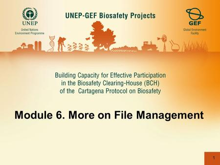 1 Module 6. More on File Management. 2 Update banner.jpg file from File Management. The banner must be 940px wide. Step 1. Click on the File Management.