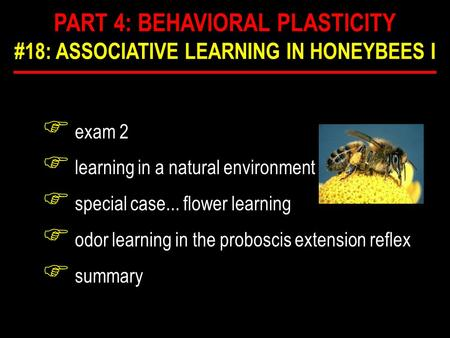 F exam 2 F learning in a natural environment F special case... flower learning F odor learning in the proboscis extension reflex F summary PART 4: BEHAVIORAL.