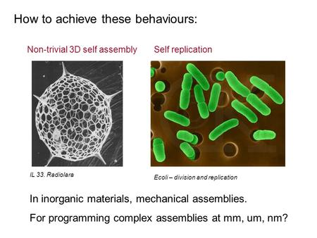 How to achieve these behaviours: IL 33. Radiolara Ecoli – division and replication Non-trivial 3D self assemblySelf replication In inorganic materials,