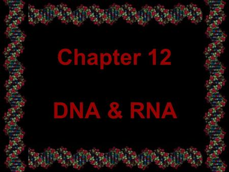 1 Chapter 12 DNA & RNA. 2 12-1 DNA How do genes work? What are they made of? How do they determine characteristics of organisms? In the middle of the.