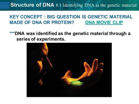 8.2 Structure of DNA KEY CONCEPT : BIG QUESTION IS GENETIC MATERIAL MADE OF DNA OR PROTEIN? DNA MOVIE CLIPDNA MOVIE CLIP ***DNA was identified as the genetic.