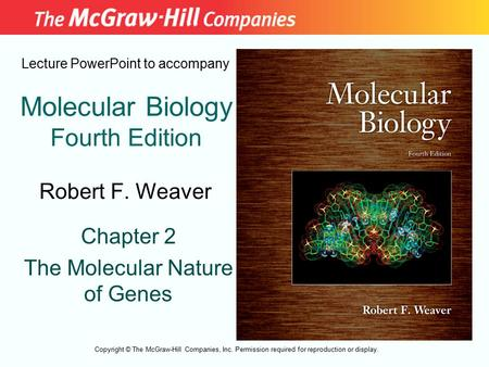 Molecular Biology Fourth Edition Chapter 2 The Molecular Nature of Genes Lecture PowerPoint to accompany Robert F. Weaver Copyright © The McGraw-Hill Companies,