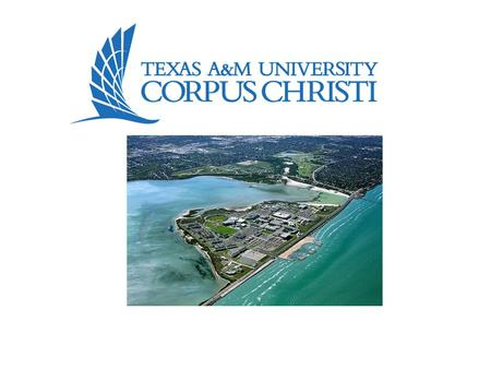Welcome to TAMUCC We are happy to know that you have chosen to attend Texas A&M University – Corpus Christi. The information that follows is intended to.