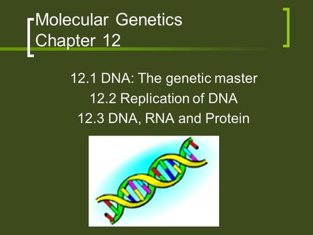 Molecular Genetics Chapter 12 12.1 DNA: The genetic master 12.2 Replication of DNA 12.3 DNA, RNA and Protein.
