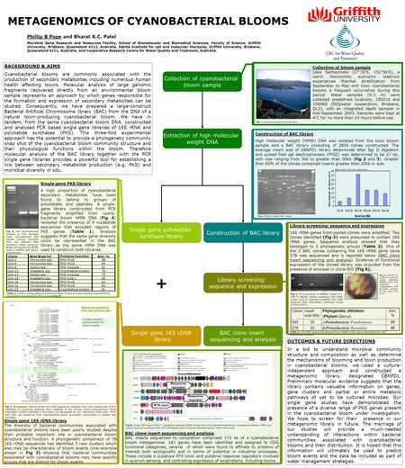 METAGENOMICS OF CYANOBACTERIAL BLOOMS Phillip B Pope and Bharat K.C. Patel Microbial Gene Research and Resources Facility, School of Biomolecular and Biomedical.