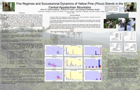 Fire Regimes and Successional Dynamics of Yellow Pine (Pinus) Stands in the Central Appalachian Mountains Henri D. Grissino-Mayer¹, Charles W. Lafon²,