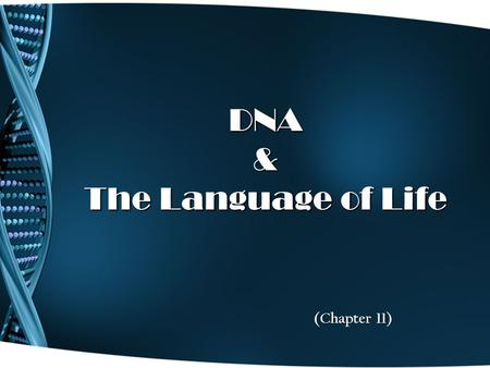 DNA & The Language of Life (Chapter 11). Griffith's Transformation Experiment 1928 – Frederick Griffith is studying how certain strains of bacteria cause.